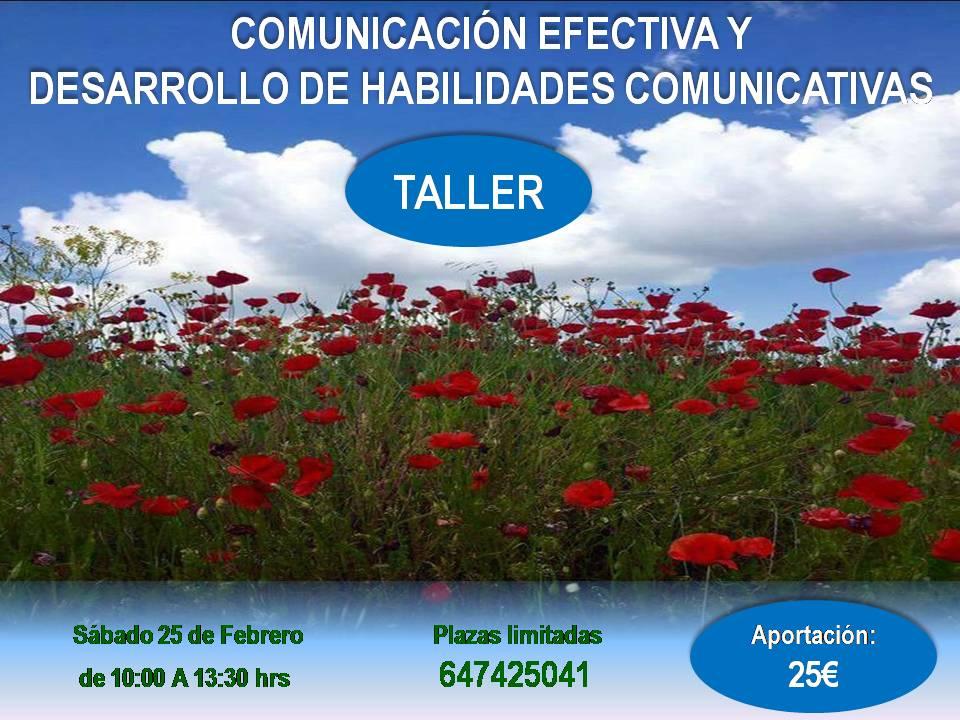 Comunicación efectiva y desarrollo de habilidades comunicativas