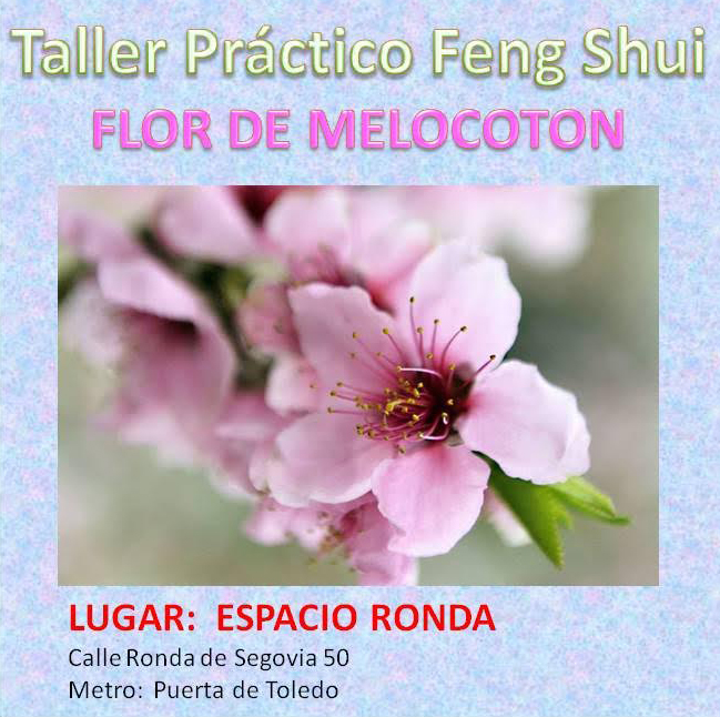 """Taller práctico Feng Shui """"Flor de melocotón"""""""