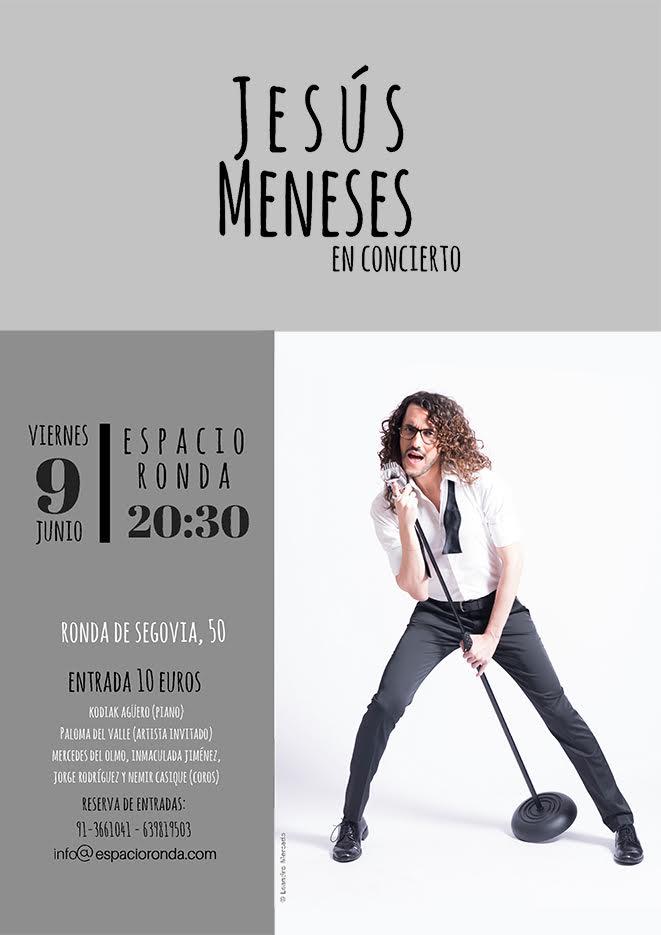 Jesús Meneses en concierto