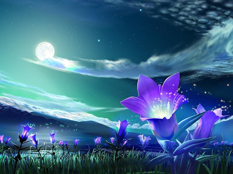 La magia de la tierra y ritual de bendición de los 4 elementos