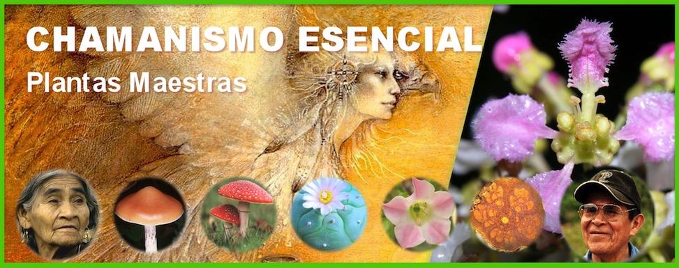 """Chamanismo Esencial """"Plantas Maestras"""""""